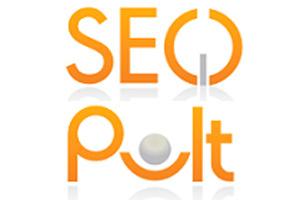 Работа системы SeoPult в праздники